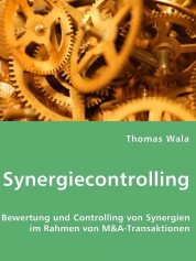 synergiecontrolling